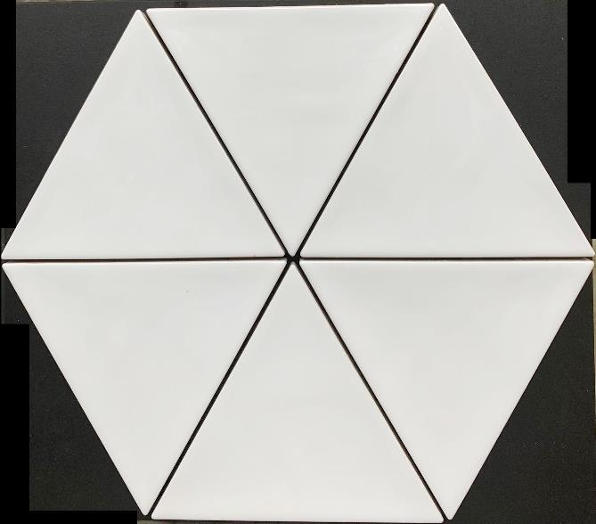 WHITE GLOSS TRIANGULUS